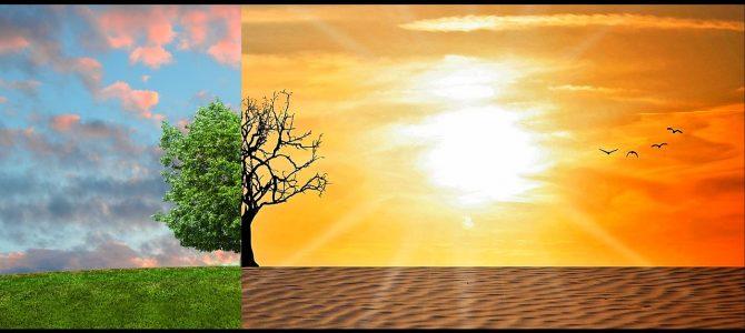 Cambiamento climatico, cosa si può fare?